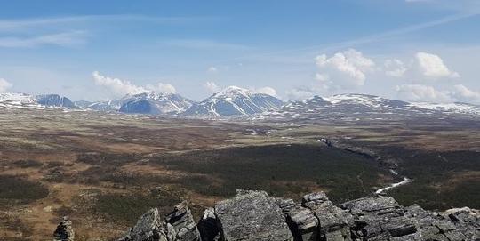Kasen in Rondane national park